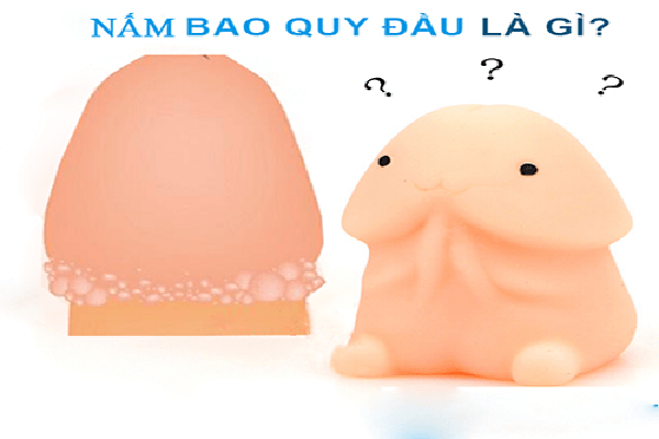 nam-bao-quy-dau